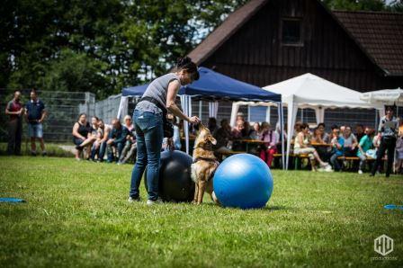 Tierheimfest-96