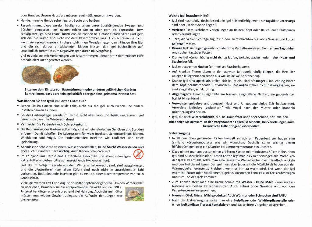 Nützliches u. Wissenswertes über Igel2