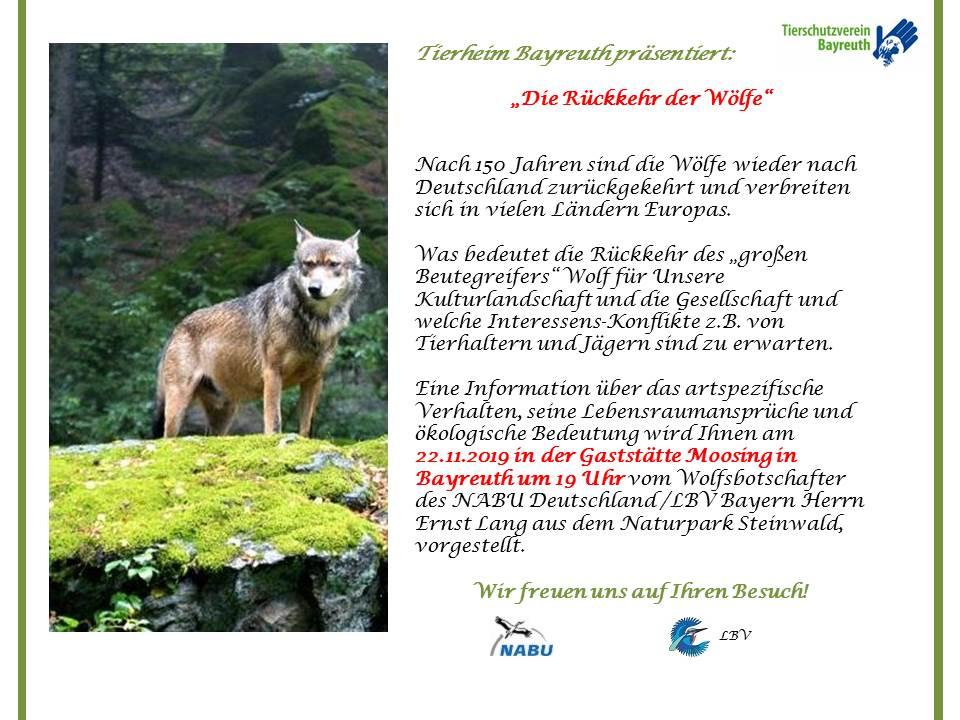 Wolfsvortrag